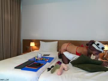 [28-01-21] xxxkinky_cat chaturbate private show video