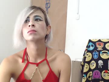 [16-12-20] stefy19 record premium show video from Chaturbate
